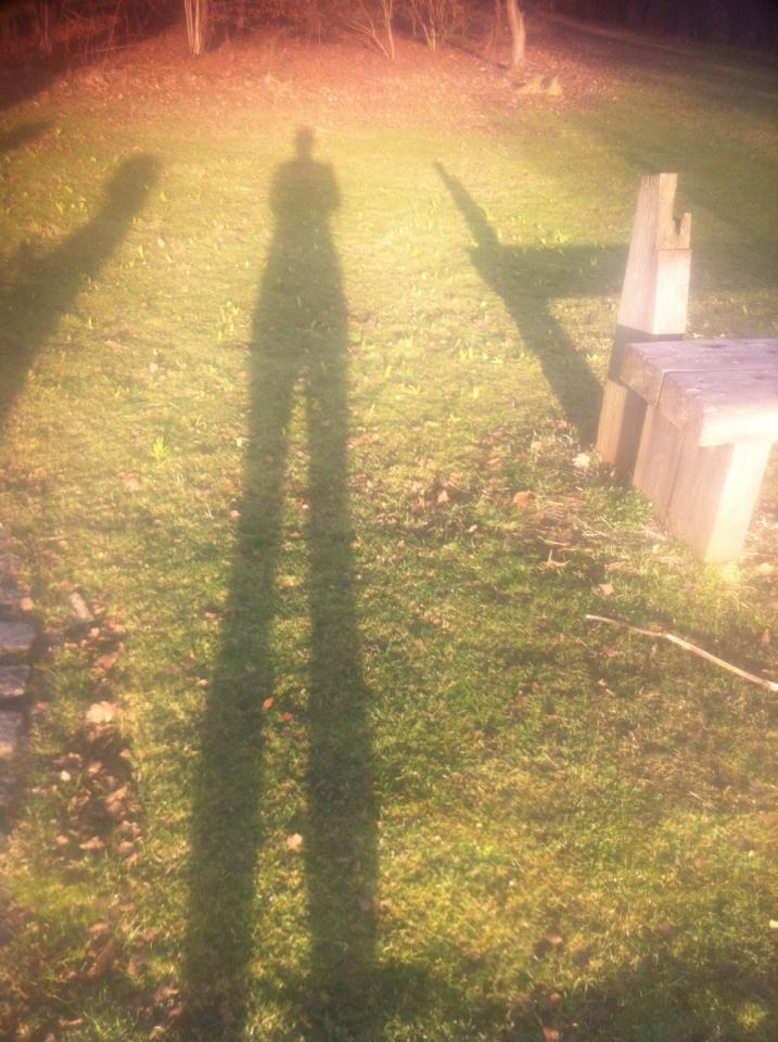 Sunny shadow