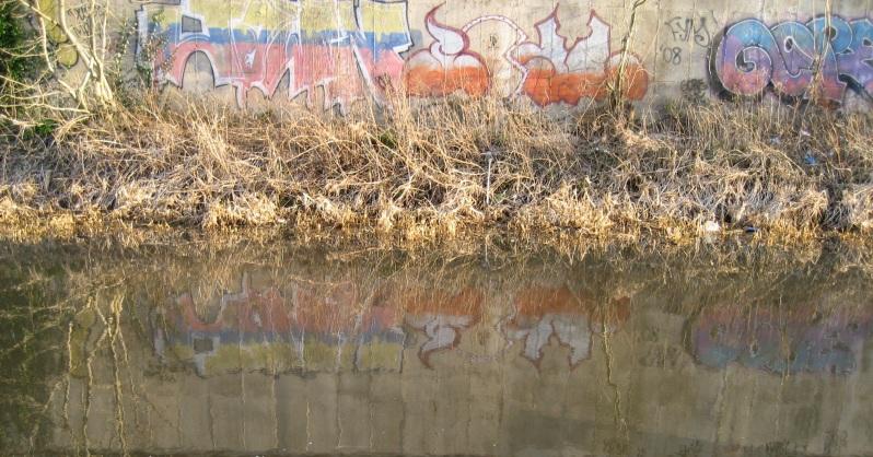 Canal graffitti