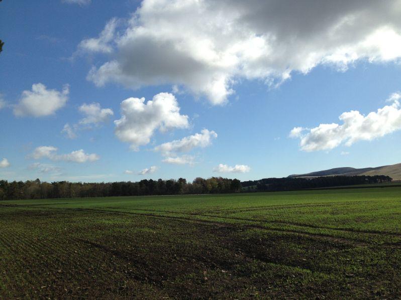 Harlaw hills