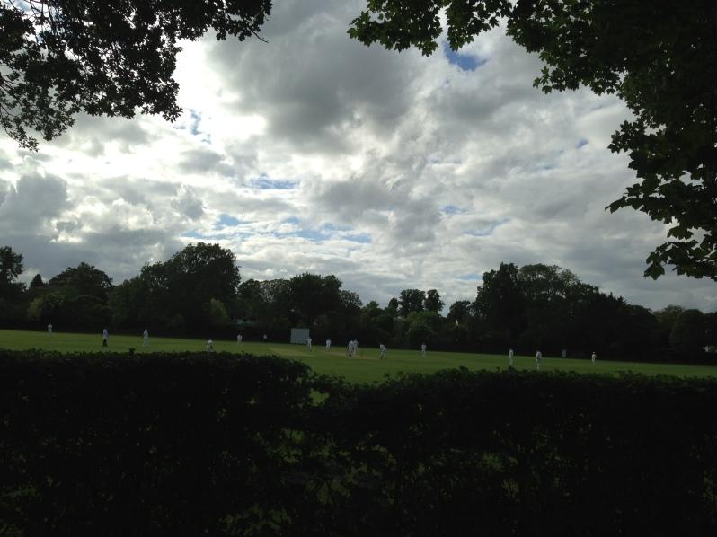 evening cricket match