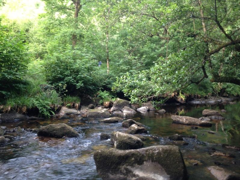 river shot 1