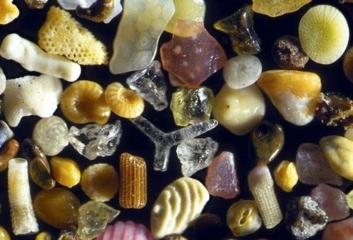 Sand under a +250 microscope