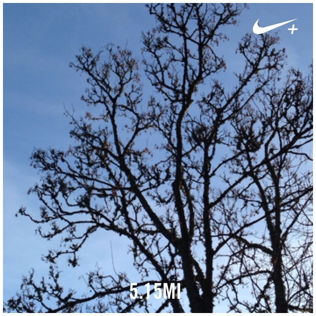 Dec1 run
