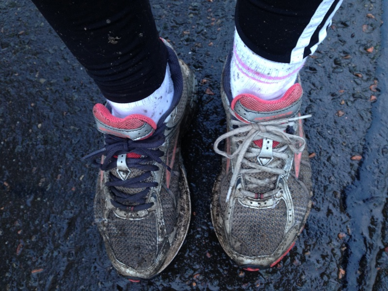 muddy shoes and laces