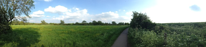 granchester meadows panorama