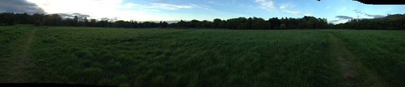 polo fields panorama
