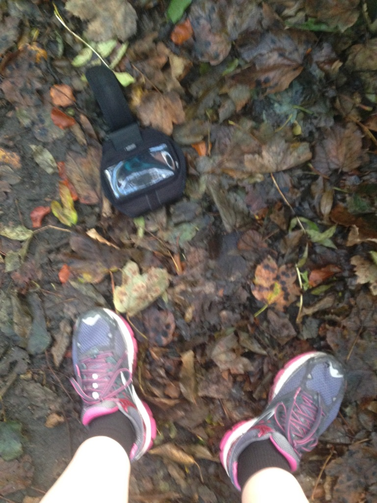 running shoes, autumn leaves