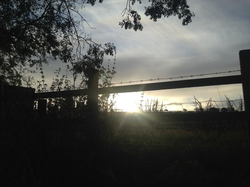 path, sun, silhouette