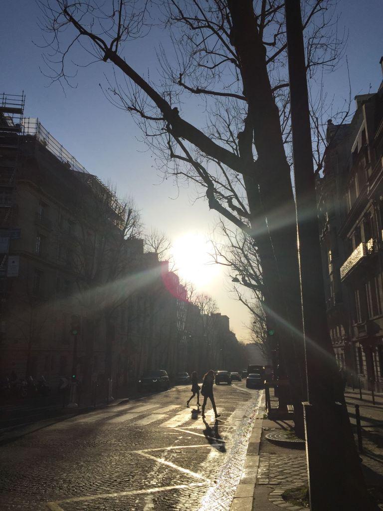 sunny street 17