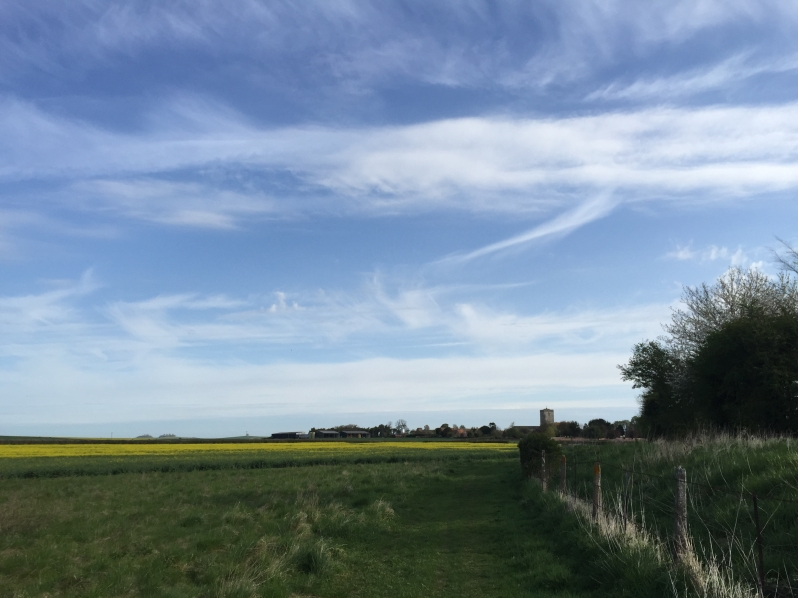Cholsey fields and sky
