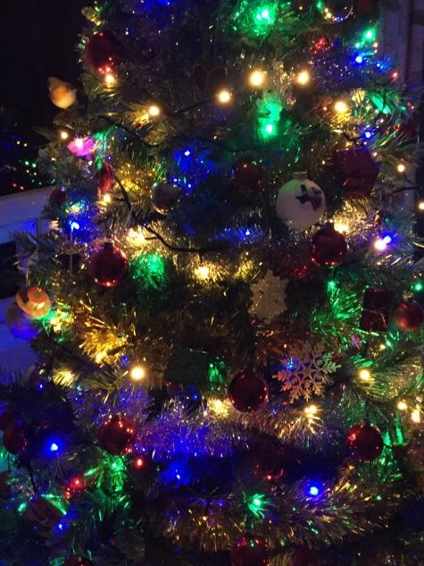 December blog picture - 1