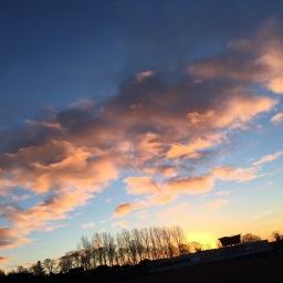 Feb blog post2 - 1