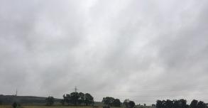 Aug rainy blog - 1 (4)